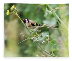 European Goldfinch Perched On Flower Stem B Fleece Blanket