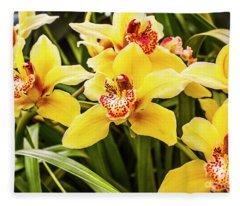Exotic Orchids  Fleece Blanket