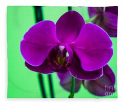 Exposed Orchid Fleece Blanket