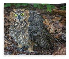 Eye To Eye With Owl Fleece Blanket