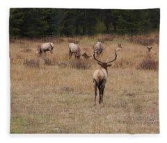 Faabullelk113rmnp Fleece Blanket