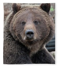 Face Of The Grizzly Fleece Blanket