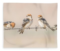 Fairy Martins Fleece Blanket