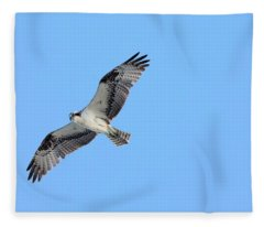 Falcon In Flight Fleece Blanket