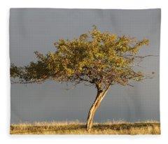 Fall At The Crabapple Tree Fleece Blanket