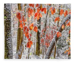 Fall Color Autumn Snow Fleece Blanket