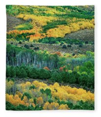 Fall Color In The Eastern Sierras California Fleece Blanket