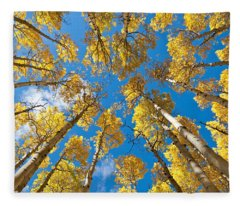 Fall Colored Aspens In The Inner Basin Fleece Blanket