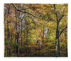 Fall Colors Of Rock Creek Park Fleece Blanket
