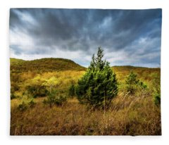 Fall In The Ozarks Fleece Blanket