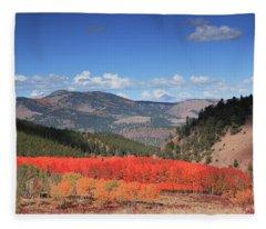 Fall In  Ute Trail  Fleece Blanket