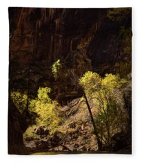 Fall In Zion Fleece Blanket