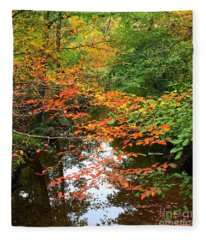 Fleece Blanket featuring the photograph Fall Is In The Air by Rafael Salazar