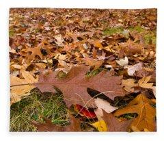 Fall Fleece Blanket