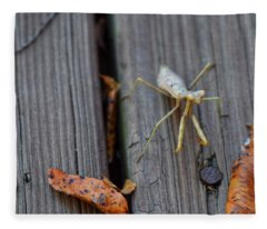 Fall Mantis  Fleece Blanket