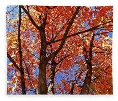 Fall Maple Fleece Blanket