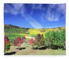 Fall On County Road 12 Fleece Blanket