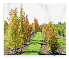 Fall On The Tree Farm Fleece Blanket