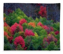 Fall Poppers Fleece Blanket