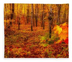 Fall Sugar Bush Fleece Blanket
