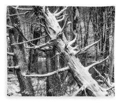 Fallen Tree And Snow Fleece Blanket