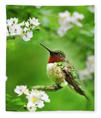 Fauna And Flora - Hummingbird With Flowers Fleece Blanket
