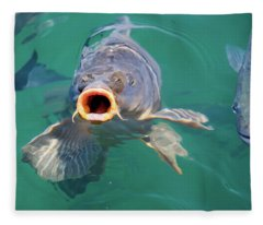 Feed Me Fleece Blanket