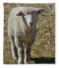 Feeling Sheepish Fleece Blanket