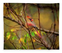 Female Cardinal #1 Fleece Blanket