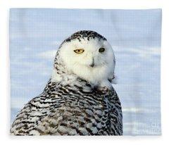 Female Snowy Owl Fleece Blanket
