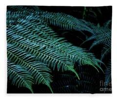 Patterns Of Nature 6 Fleece Blanket
