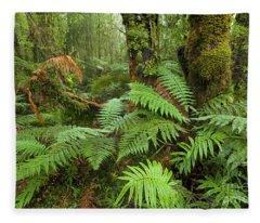 Fern In Wetland Natl Park Fleece Blanket