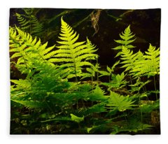 Fern Light Fleece Blanket