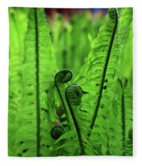 Fern Unfurling Fleece Blanket