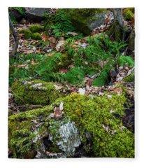 Ferns In December  Fleece Blanket