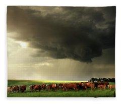 Field Of Beams Fleece Blanket