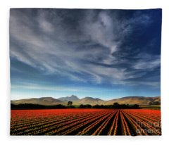 Field Of Color Fleece Blanket