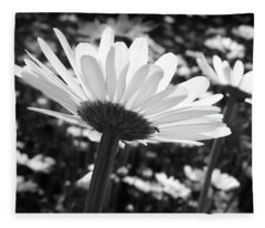Field Of Daisies And The Little Ant Fleece Blanket