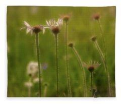 Field Of Flowers 2 Fleece Blanket