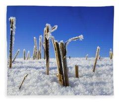 Field Of Frosty Straws Fleece Blanket