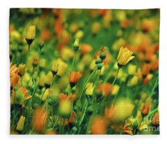 Field Of Orange And Yellow Daisies Fleece Blanket