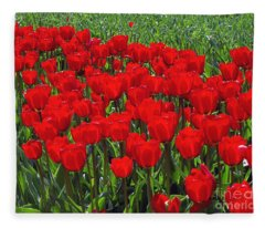 Field Of Red Tulips Fleece Blanket