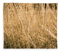 Fleece Blanket featuring the photograph Fields Of Gold by Allin Sorenson