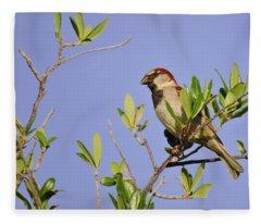 Finch Fleece Blanket