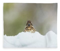 Female Purple Finch Fleece Blanket