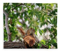 Find The Squirrel  Fleece Blanket