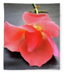 First Rose  Fleece Blanket