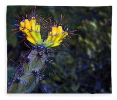 First Signs Of Spring On The Sonoran Desert Fleece Blanket