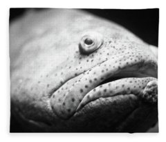 Fish Face Fleece Blanket