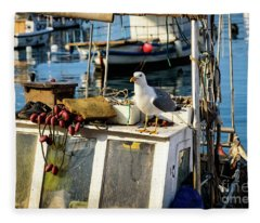 Fishing Boat Captain Seagull - Rovinj, Croatia Fleece Blanket